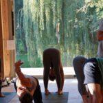 Ashtanga Yoga Mysore Style